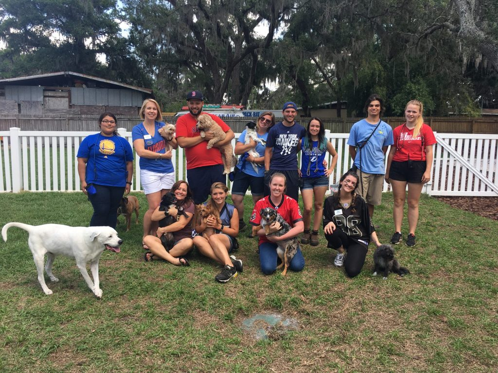 group of kennel technicians dressed in athletic jerseys celebrating dog themed event