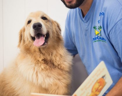 Canine Cabana | Employee Spotlight |May 2019