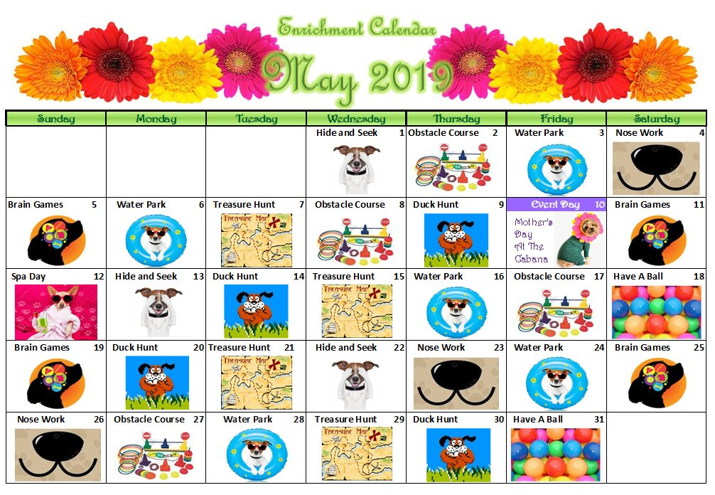 Canine Cabana Enrichment Calendar | May 2019