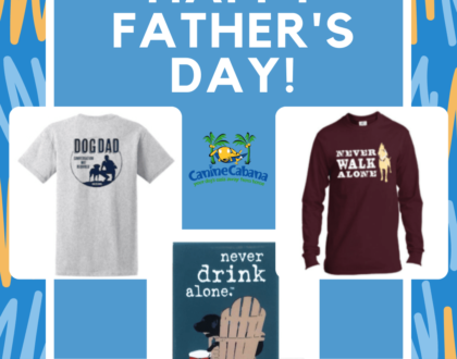 Dads, This One's For You.