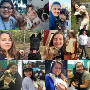 canine cabana women team