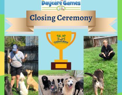 https://caninecabana.biz/wp-content/uploads/2021/03/Closing-Ceremony-420x330-1.jpg