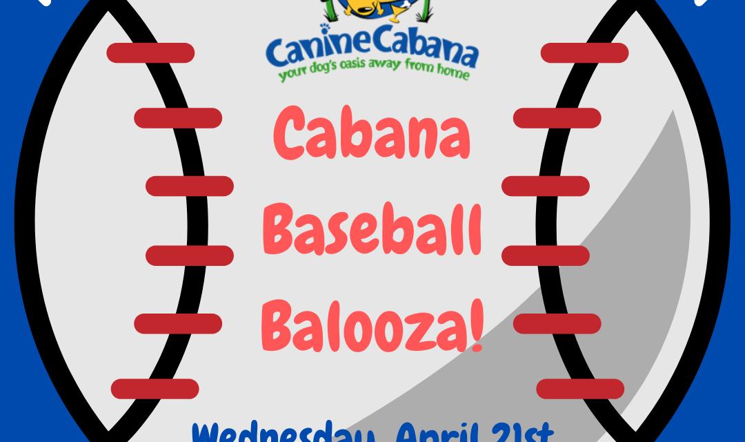 https://caninecabana.biz/wp-content/uploads/2021/04/Cabana-Baseball-Balooza-1080x640.png