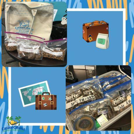 https://caninecabana.biz/wp-content/uploads/2021/07/lodging-bags-460x460-1.jpg